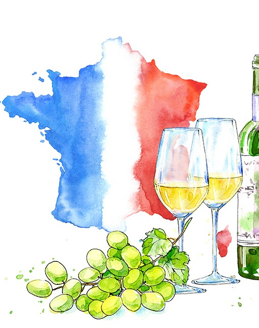 Tour de France des vins blancs