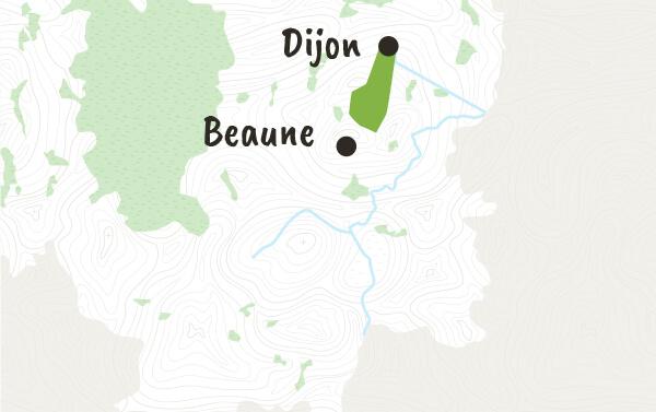 Côte de Nuits et Hautes Côtes de Nuits