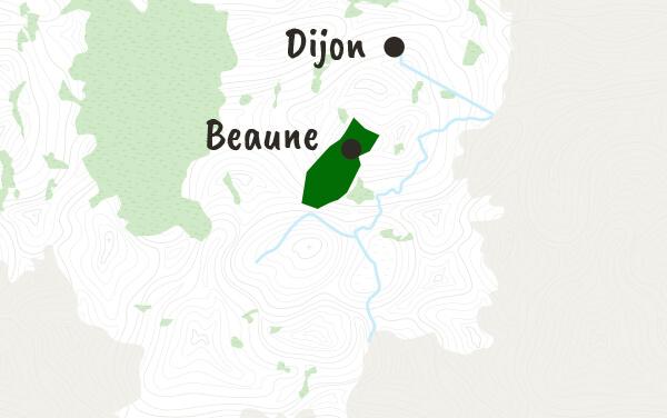 Côte de Beaune et Hautes Côtes de Beaune