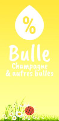Bulle-ptps.jpg