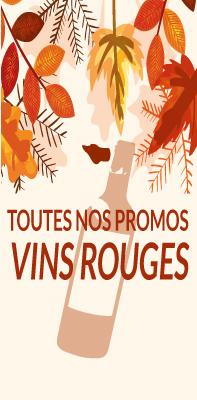 Vins rouges promotions